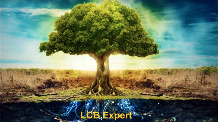 Lcb Expert Contab